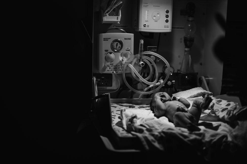 birth photography melbourne (53).jpg