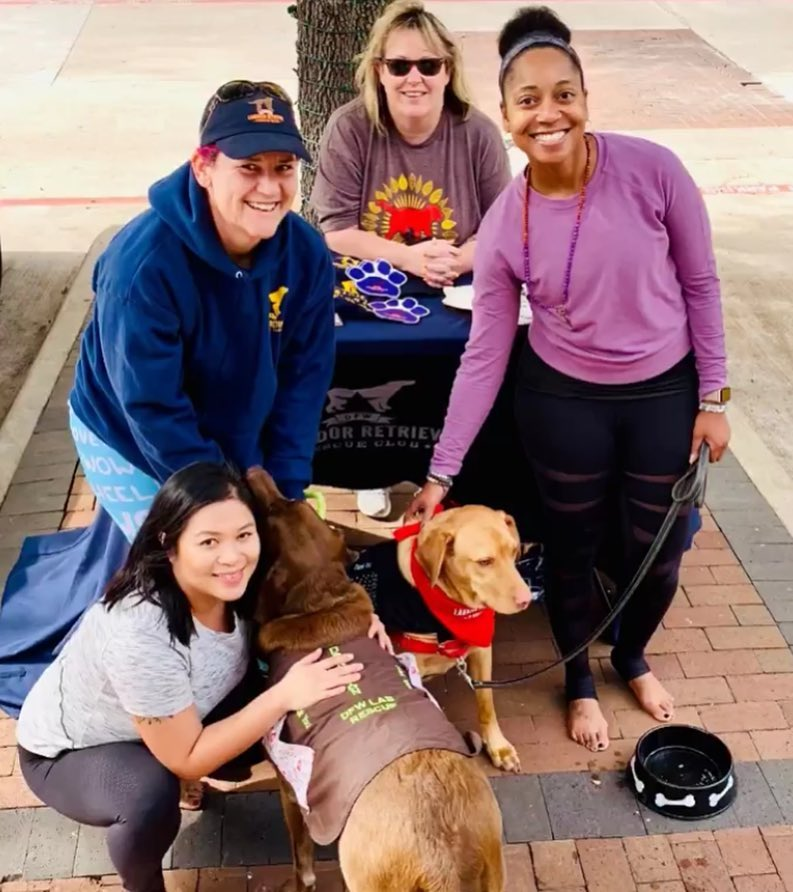 Month of Giving: DFW Lab Rescue