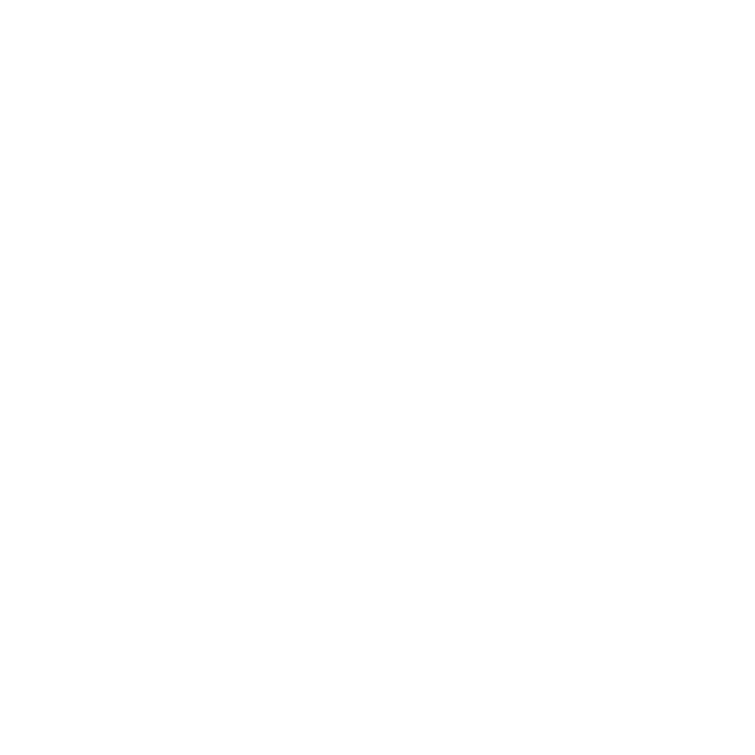 Students for Taiwanese Educational Progress (STEP)