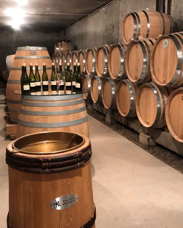 dégustation sur fûts 🍷 #felettig #domainefelettig #chambollemusigny #wine #winelover #winetasting #winecellar #burgundy #burgundywine #instawine #winestagram #welovewine