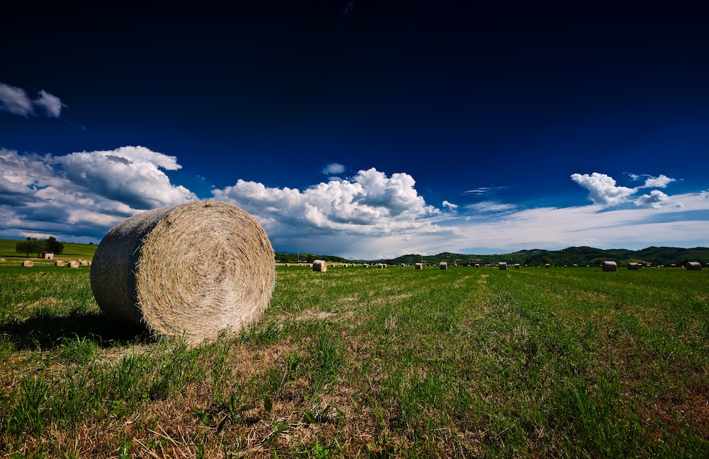 A big hay bale on a green grass field under a blue sky with some white clouds