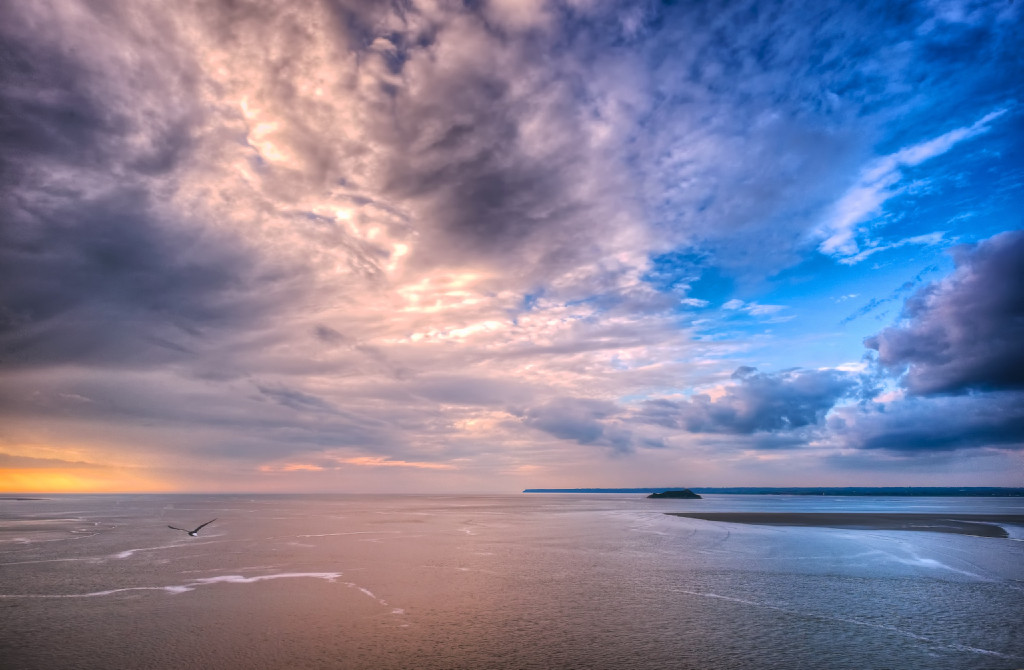 A seagull flies toward the setting sun over the Mont Saint Michel laguna
