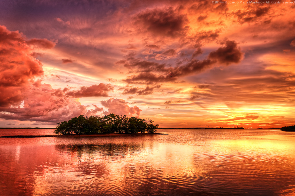 A dramatic sunset over the everglades