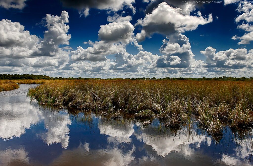 A beautiful sky mirrors into the everglades water
