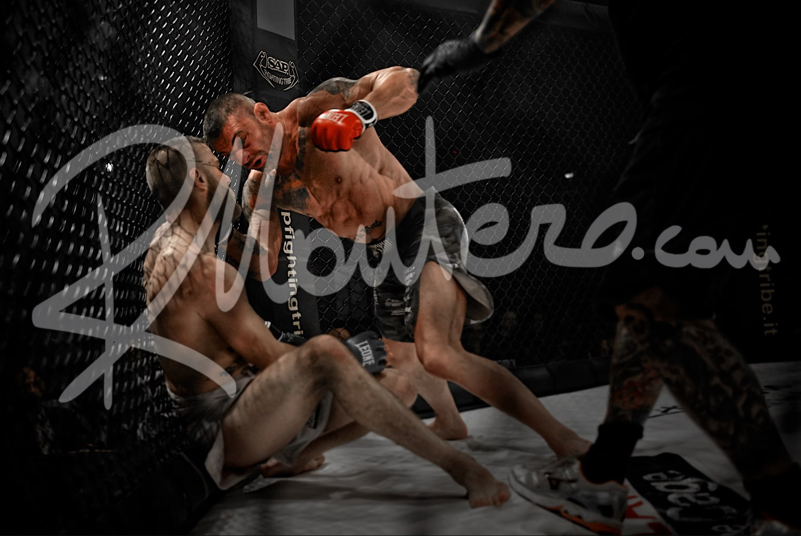 Milano in the Cage 2014 Fight