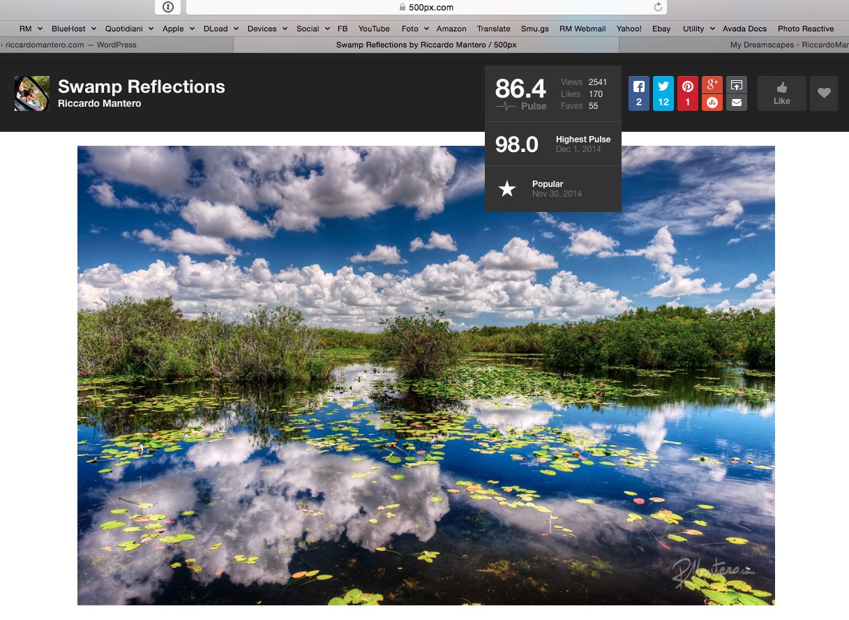 500px screenshot with the ranking of my photo swamp reflections