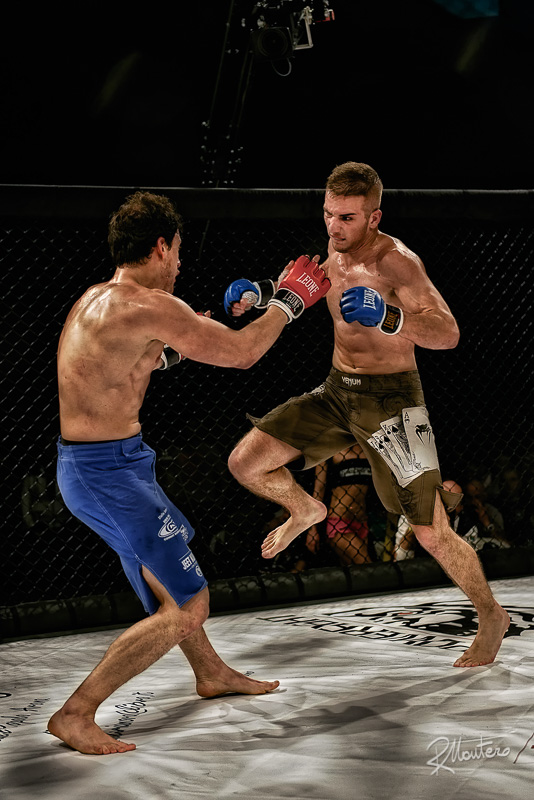 Mixed martial arts fighters in a cage