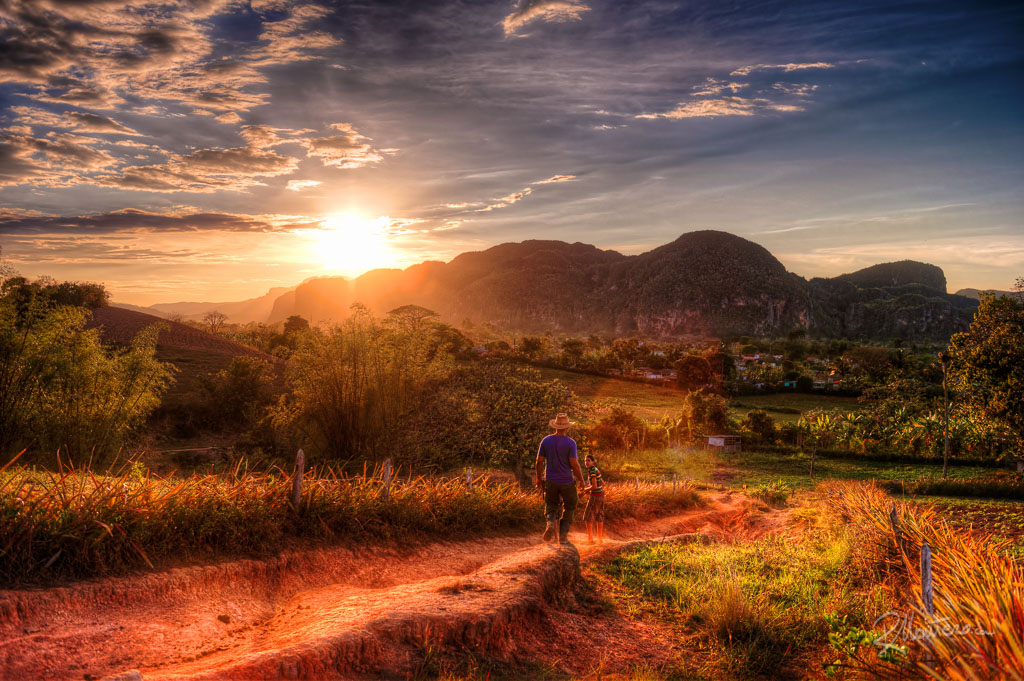 The valley of Vinales is famous for the Mogotes and the Tobacco crops, here, some campesinos are returning home after a long work day.