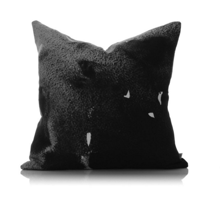 Penney & Bennett Black Moonstone Small Cushion