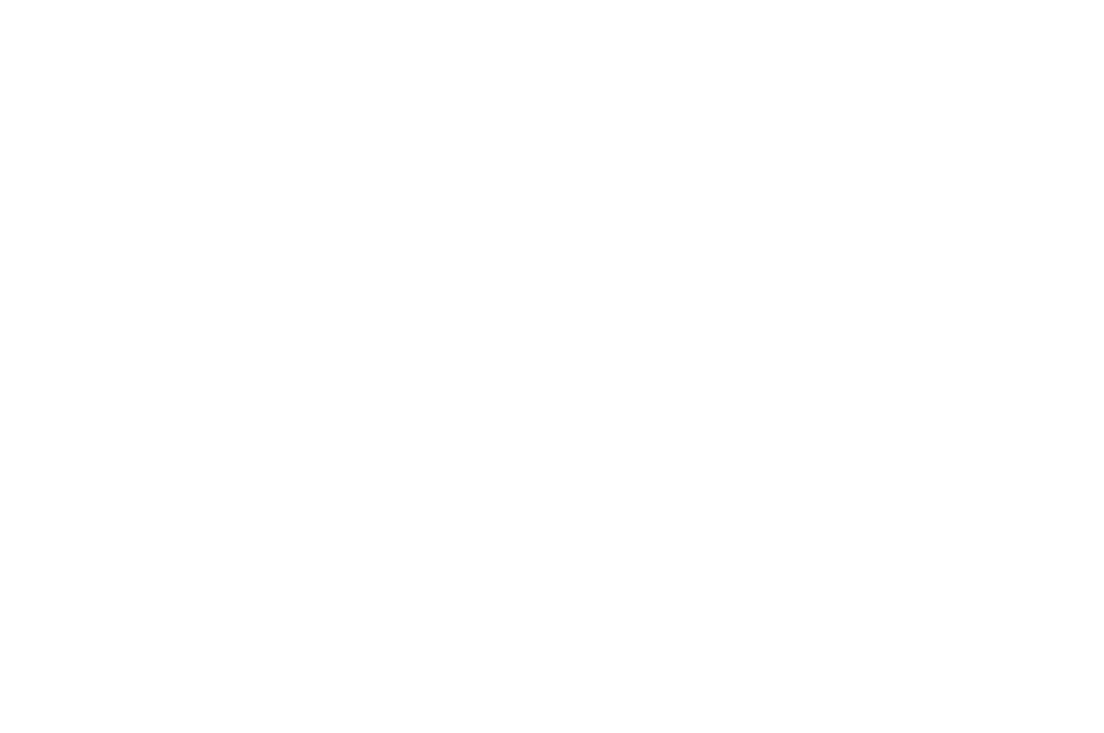 Flickerfest 2018 Official Selection Laurels white.png