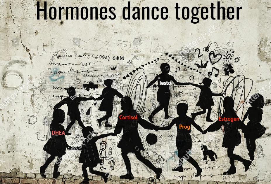 Hormones dance.png
