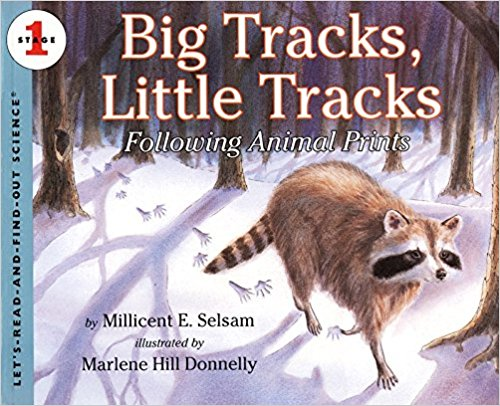 BigTracksLittleTracks