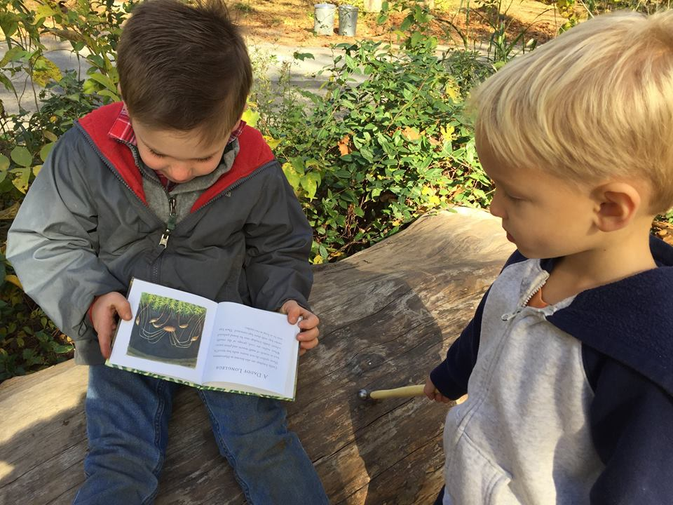 Do Books Have a Role in Nature Play?