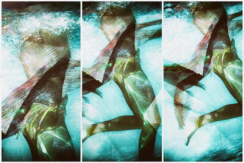 costa-rica-Legs-Triptych-P1040399.jpg