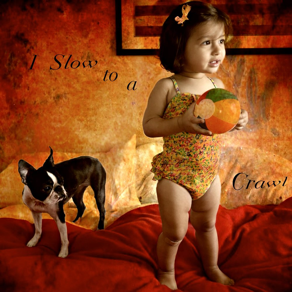 Babies-and-Dogs-Anshwara-I-slow-to-a-crawl.jpg