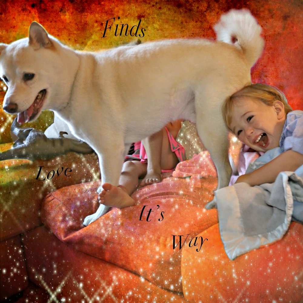 Babies-and-Dogs-Liv,-Leo-and-Tomo-on-Couch.jpg
