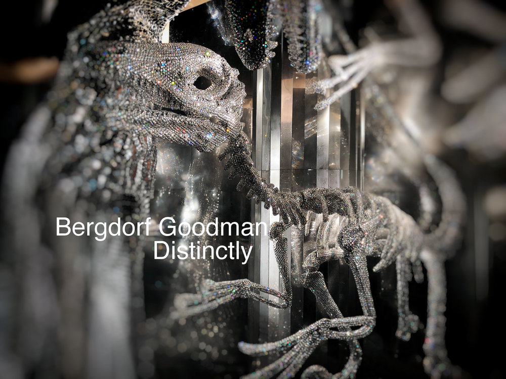 _Bergdorf-Holiday-Windows-Dinosaur-DNNM6078.jpg