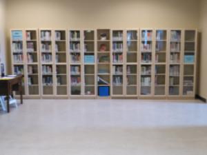 LibraryShelves.jpg