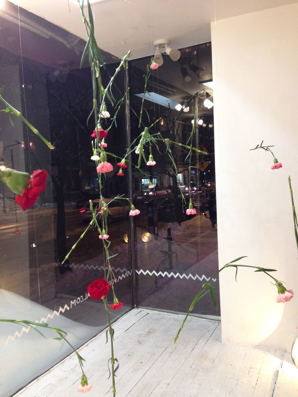 Window Installation of suspended fresh carnations.