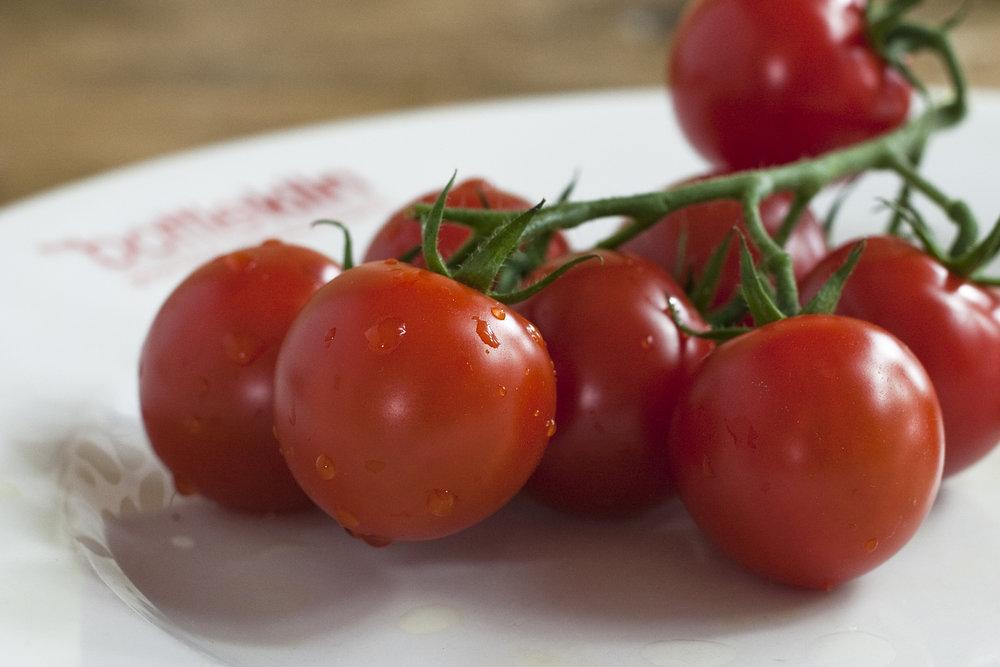 tomatoes_35350164190_o.jpg