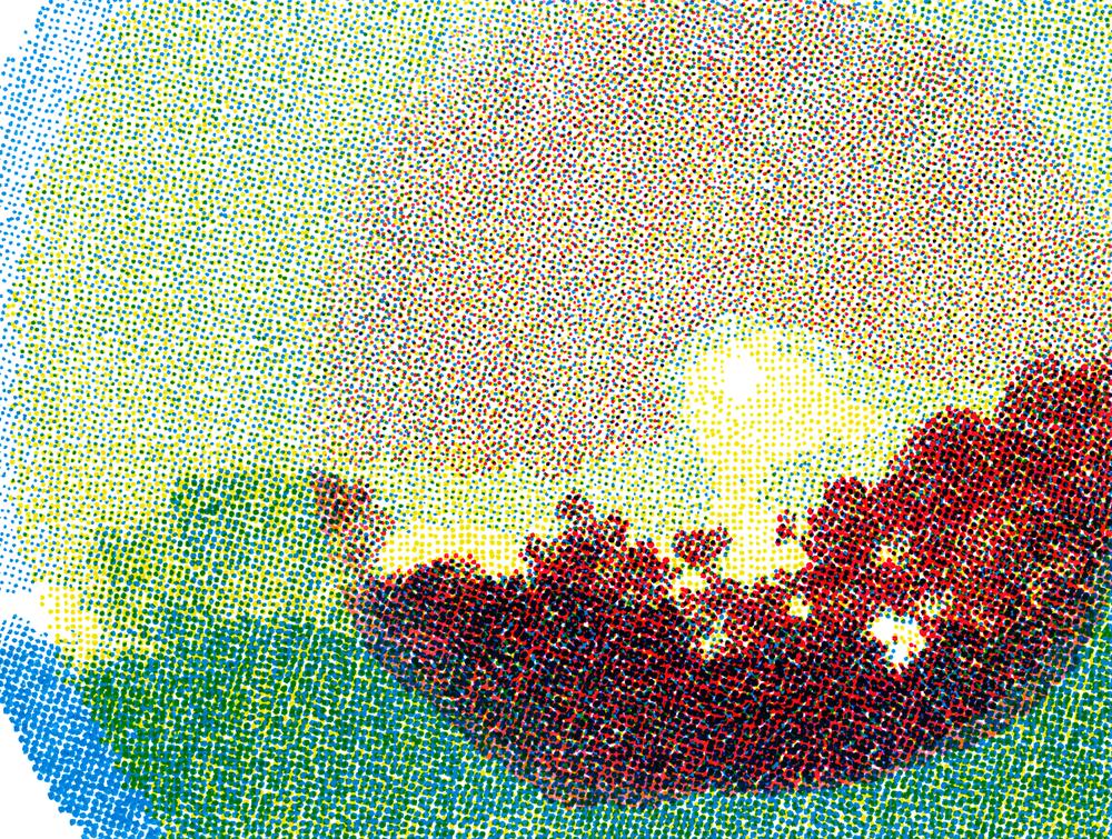 pedro_sunset_2.png