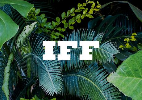 Thumb-IFF.jpg