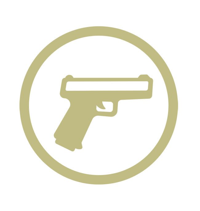 Pistol Icon_Khaki_sm copy2.png