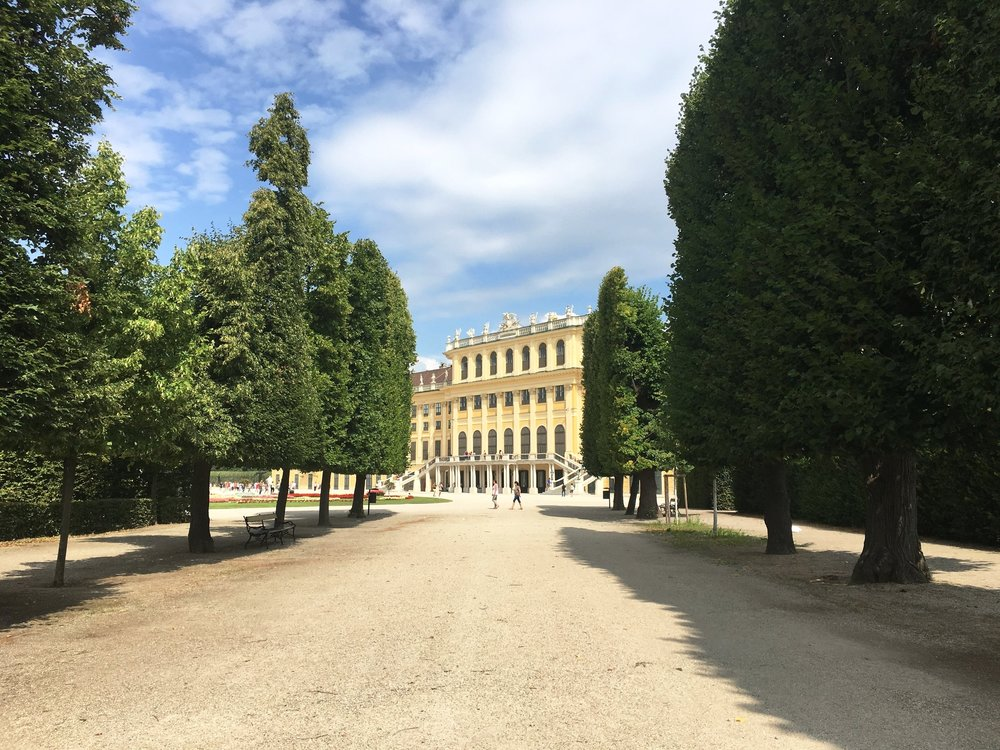 "Schönbrunn Palace is worth a visit.  Not the most spectacular palace we've ever seen but it is a major stop on the bus route if you buy the Vienna Pass, which we highly recommend by the way.   The most memorable part of the palace is actually the more ""mature"" couple ahead of us in line who couldn't take their hands off each other. It's still something we look back on today and laugh at.  See?  The city is romantic."