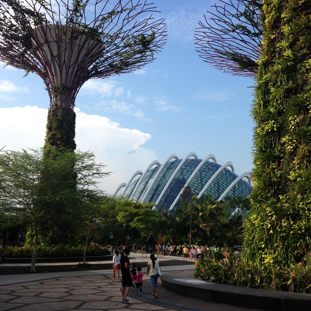 Gardens by the Bay is situated on reclaimed land in central Singapore. It's an impressive must-see attraction. Singapore really knows how to show the world how it's done.