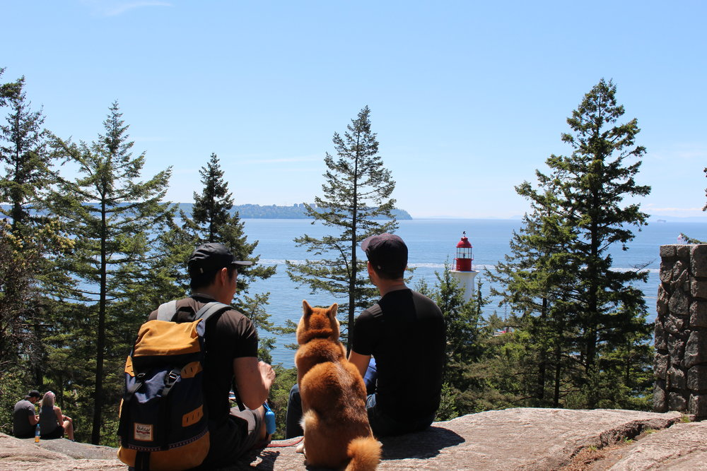 The Lighthouse hike in North Vancouver is an easy hike with an astonishing view at the end. Perfect for people of all ages and dogs. We had sandwiches for lunch while we were enjoying this beautiful view.