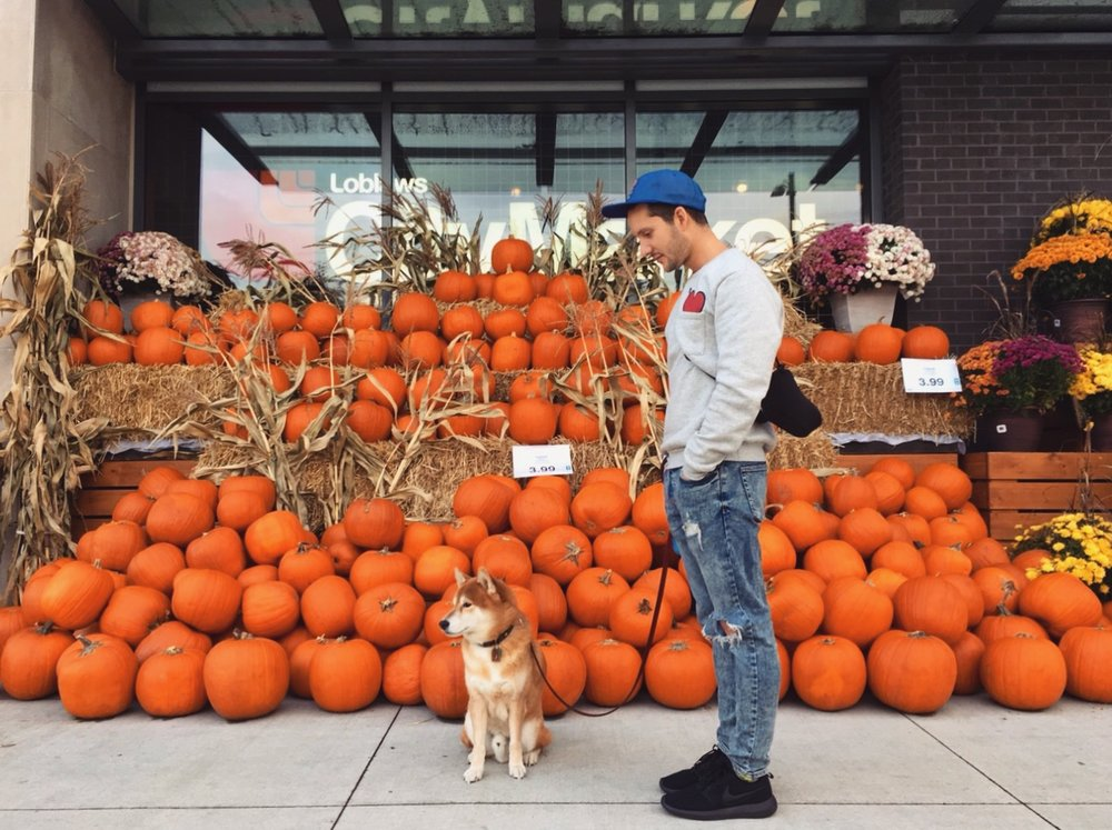 J&D and a bunch of pumpkins as a background 🎃🎃🎃🐕👦🏻🎃🎃🎃 Happy Halloween!