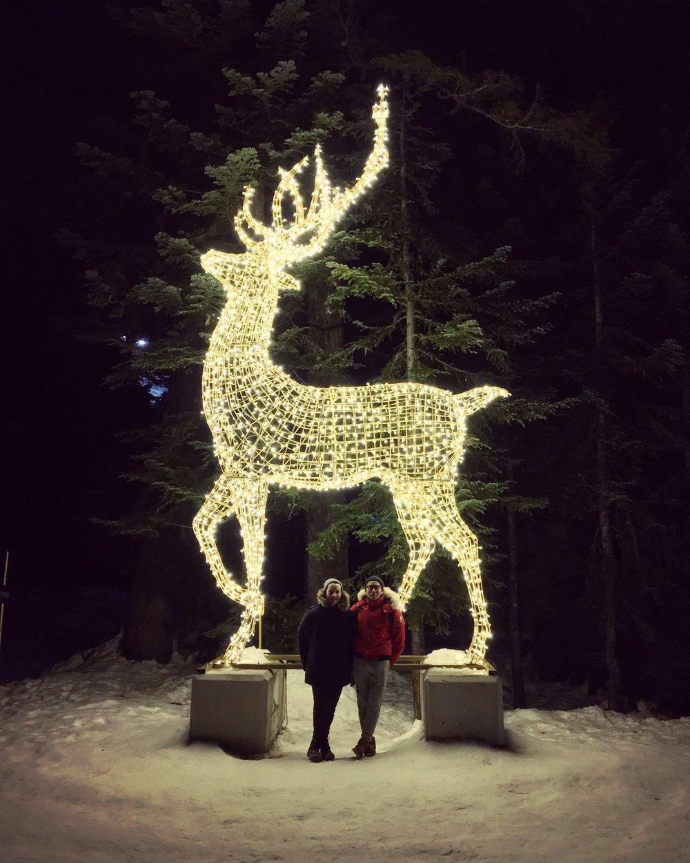 We wish you a Merry Christmas / Bon Nadal / Feliz Navidad / 聖誕節快樂 / Joyeux Noël from the peak of Vancouver 🦌