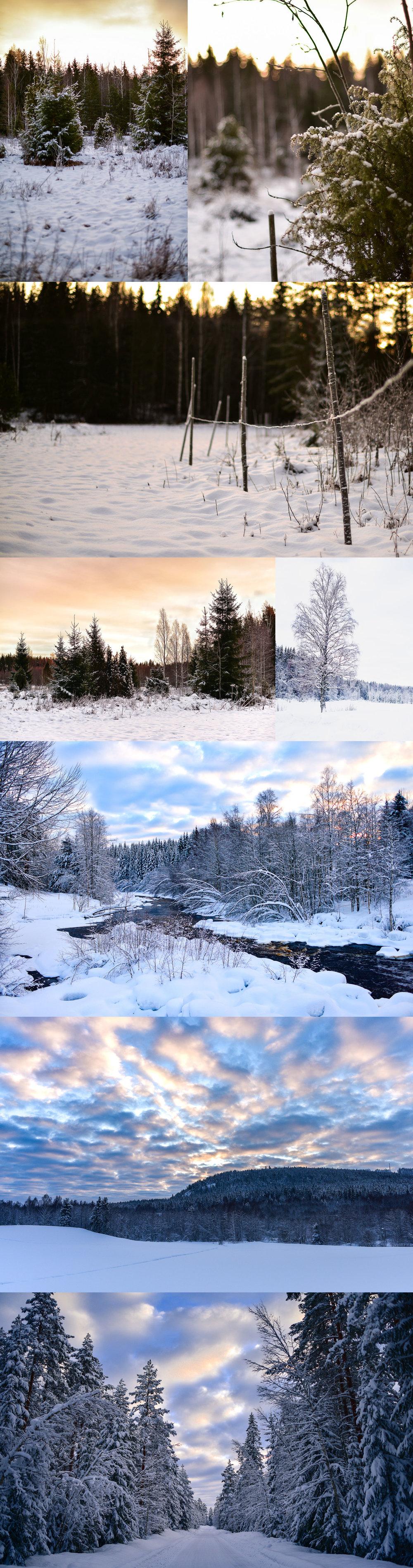 Vinterbilder.jpg