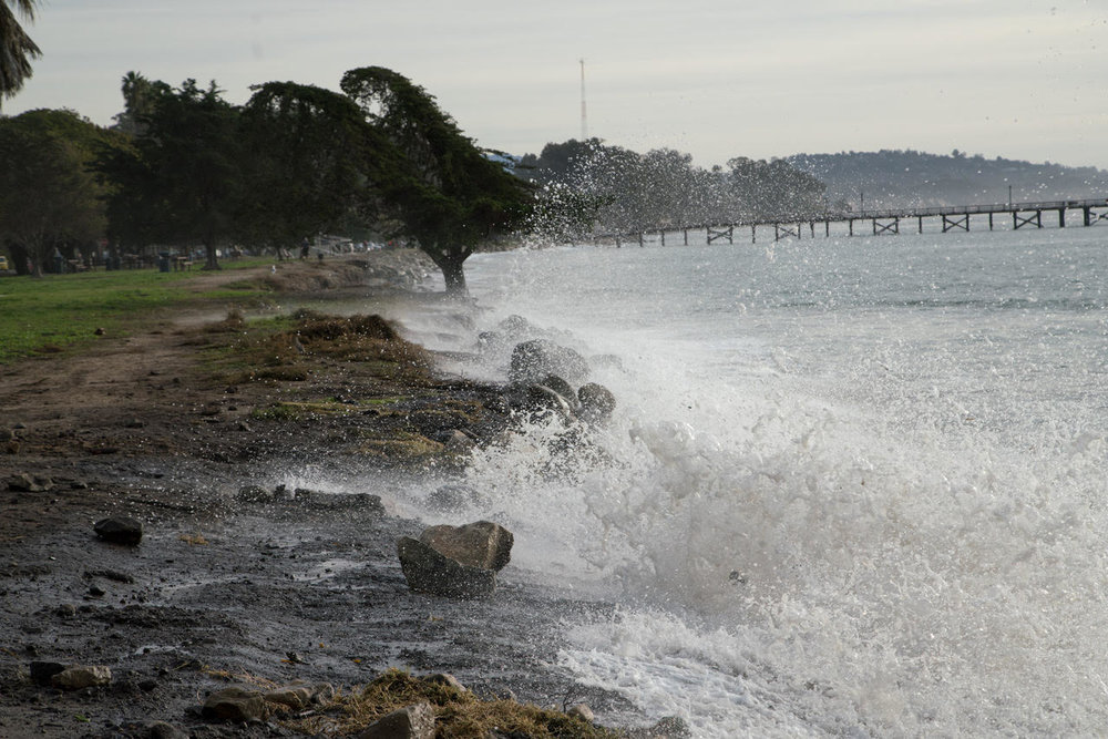 goleta beach king tide 1.jpg