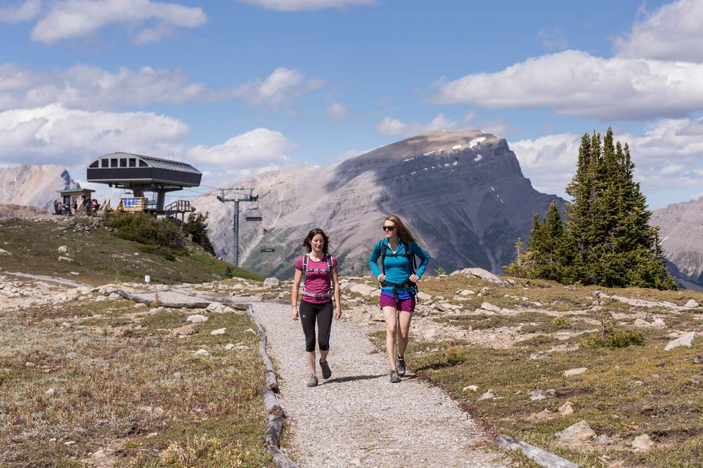 Hosted Interpretive Hiking Tours at Banff Sunshine Meadows