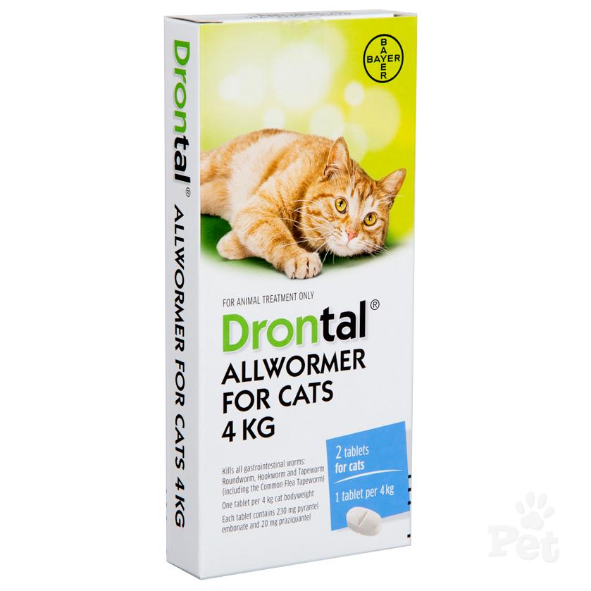 drontal cat.png