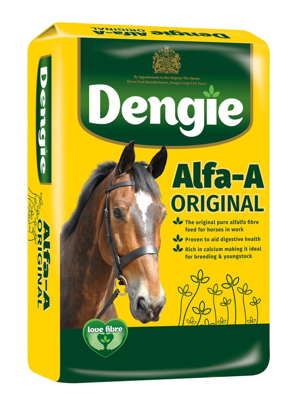 dengie horse.jpg