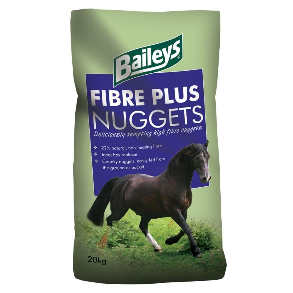 baileys horse.jpg