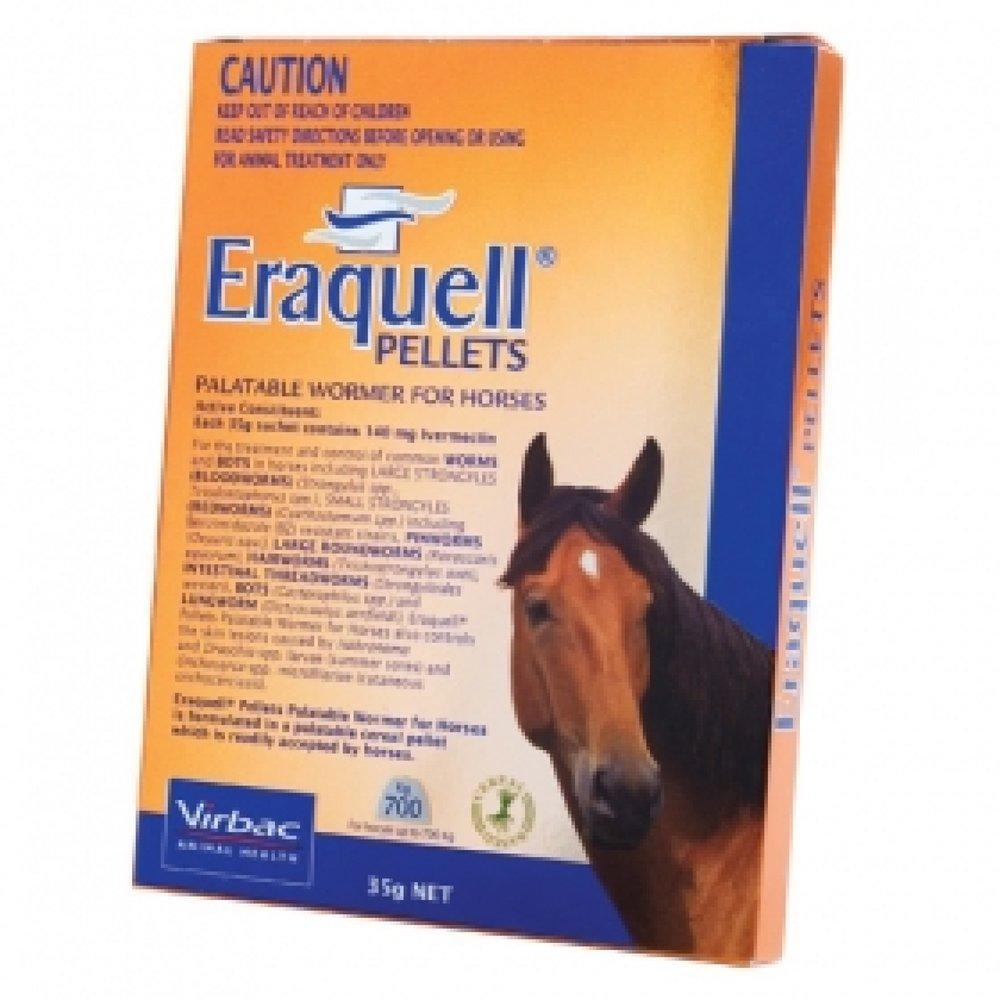 eraquell horse.jpg