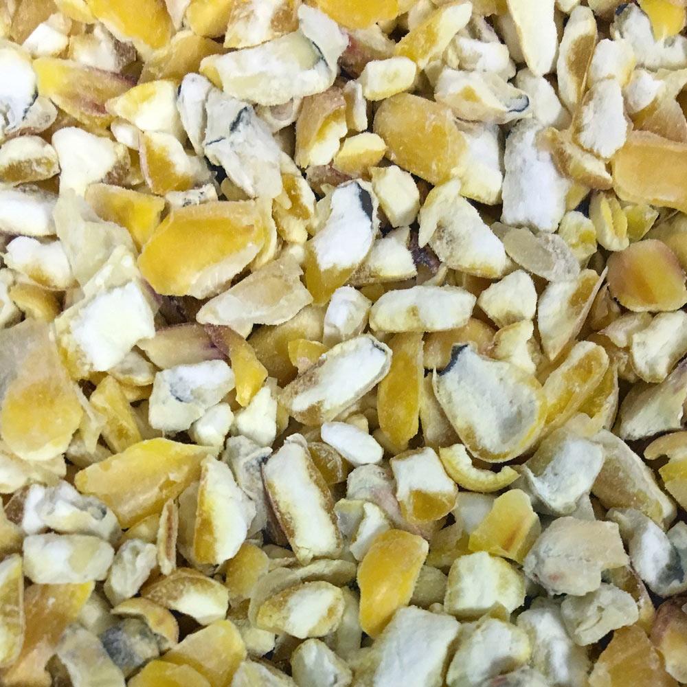 cut maize.jpg