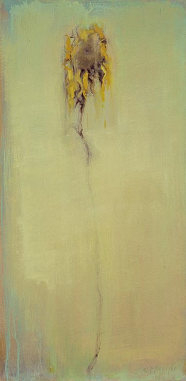 Dried Sunflower Study - 24x12