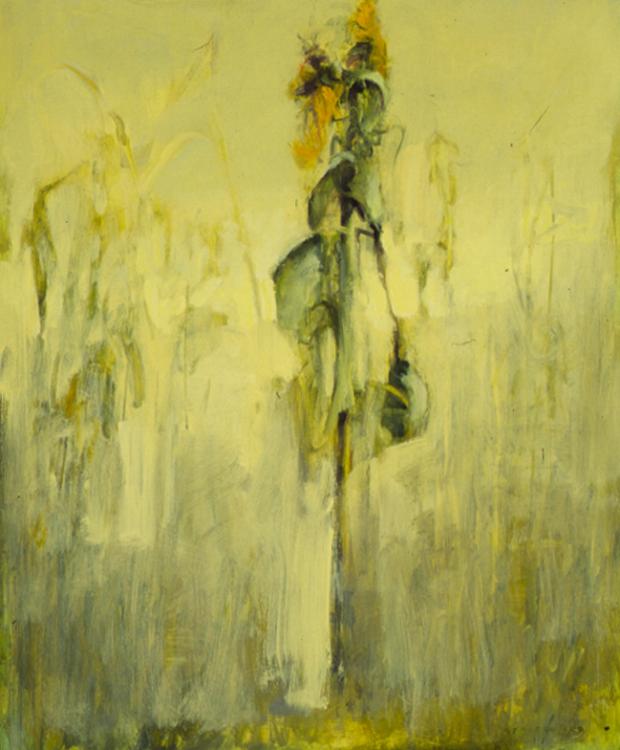 Sunflower In Field #4 - 24x20