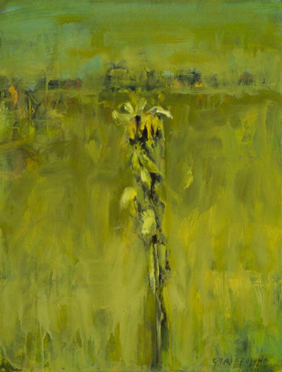 Sunflower In Field #2 - 14x12
