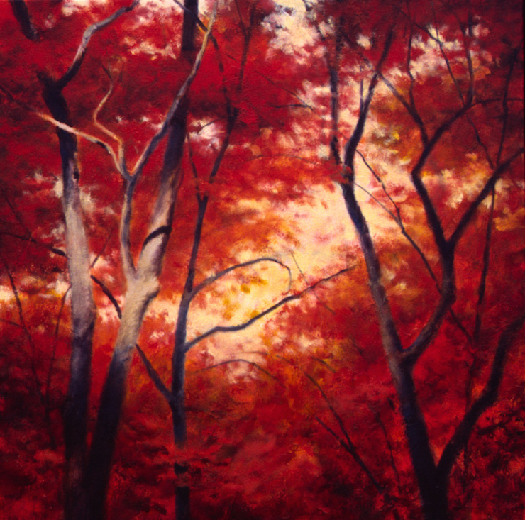Morning Maples II - 32x32
