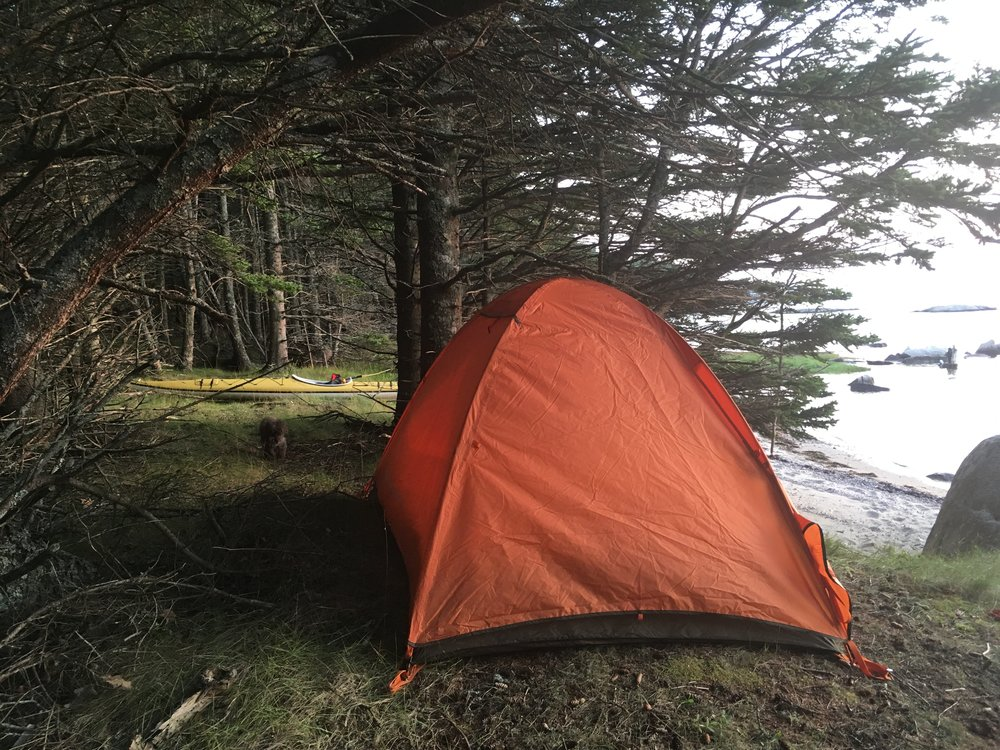 Camping by Lady Tree and Secret Beach