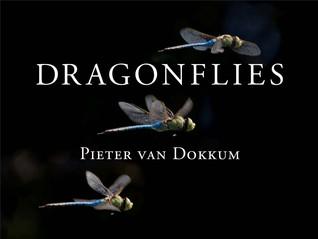 Dragonflies - Peter Van Dokkum