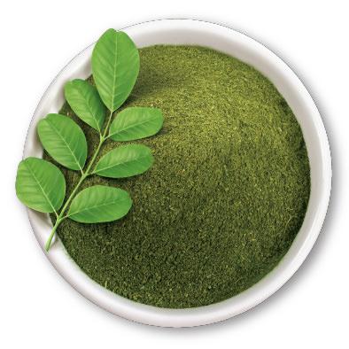 read more on the benefits on moringa -