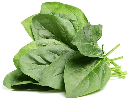 12x More Iron Than Spinach - 10 times the amount of iron than spinach. Iron replaces iron that is essential to healthy red blood cells. Iron is used to treat iron deficiency anemia. Anemia may cause problems like tiredness, shortness of breath, or slowed growth in children.