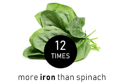 spinachVS.jpg
