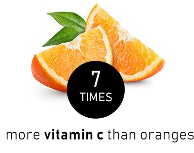 orangeVS.jpg